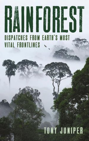 Rainforest – dispatches from Earth's most vital frontlines