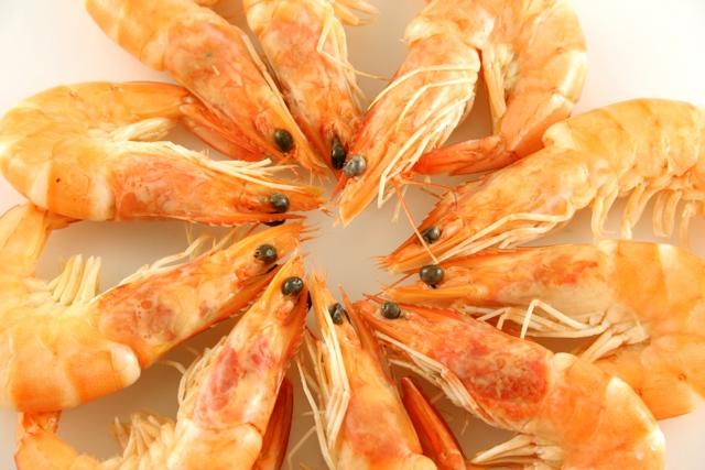 Say NO to dodgy prawns!